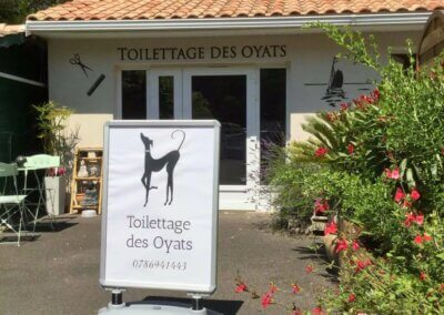 Toilettage des Oyats